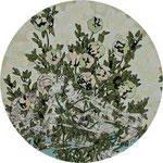 「美しい場所」2016年 木にアクリル、インク 円直径24cm