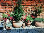 Gartendeko Hof