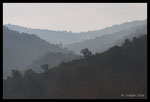 Ubac du massif des Maures
