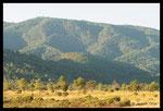 Ubac des Maures