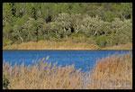 Lac des Escarcets