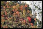 Gorges du Verdon en automne