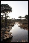 Ruisseau temporaire
