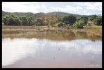 Plan d'Aille - Zone de reproduction de guêpiers innondée (en pleine couvaison)
