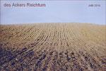 0107-Reichtum