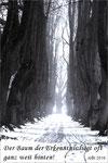 0113-Bäume