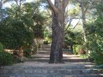 Parc Maraveyre