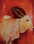 Heilige Kuh vor Rot 110x140cm