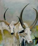 Afrikanische Kühe 55 x 65cm, verkauft