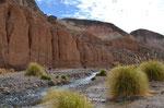 Quebrada Allane