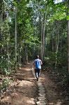 Karin alleine im Urwald