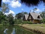 Unsere Dschungel Lodge