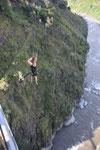 Bungee Jumping in Banos. Nein, ich bin`s nicht und Karin auch nicht!!