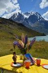 Heiligabend im Torres del Paine
