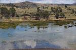 Blick auf den Umayo See