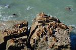 Wilde Küste um San Julian