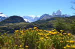 Blick auf Cerro Torre und Fitz Roy