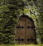 Porte de donjon (détail de Echec à la reine) - photo Gilles de Beauchêne