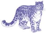 Leopard des neiges - Apprendre à dessiner les chats (Fleurus)