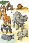 Les animaux sauvages- Dictionnaire School (Larousse)