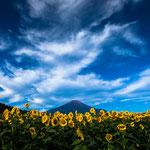 山梨 花の都公園 2012.09.26