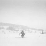 北海道 新栄の丘 2013.02.20