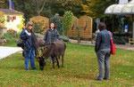 Die Wartezeit vertreiben sich die Esel mit grasen. Jutta Böckmman (links), Judith Schmidt (mitte), Frau Röhrl die Drehbuchautorin (rechts)