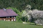 "Das ehemalige ""Reisingerhaus"" am Rothauptberg"