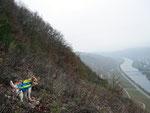 steiles Gelände oberhalb der Mosel