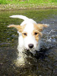 Carlos im Wasser