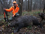 127 kg, schlägt erst Hund und nimmt dann Führer an. Franz stoppt ihn auf 2 Meter.  Waidmannsheil!!