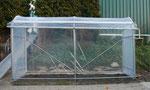 Foliengewächshaus mit aufgerollter Lüftungsseite