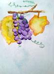 Grappes de raisin de Nassim, 9 ans et demi (aquarelle)