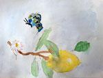 Citron de Nassim, 9 ans (aquarelle sur papier)