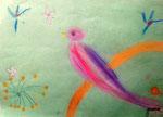 Oiseau de Junerose, 6 ans (pastel)