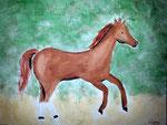Cheval de Lilimay, 10 ans (aquarelle)