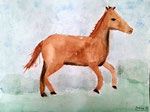 Cheval d'Antoine, 8 ans et demi (aquarelle)