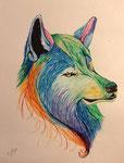 Dessin aux crayons et feutres aquarellables, Eolia, 15 ans