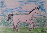 Licorne de Lilimay, 10 ans