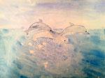 Dauphins de Rose, 7 ans et demi, aquarelle