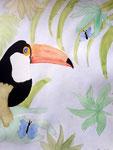 Toucan, aquarelle de Axelle, 10 ans