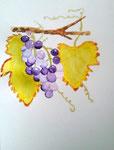 Grappes de raisin de Chloé, 12 ans (aquarelle)