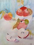 Pommes de Jeanne, 13 ans (aquarelle)