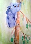 Koala d'Eloïse, 11 ans (aquarelle)