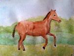 Cheval d'Eloïse, 11 ans, (aquarelle sur papier)
