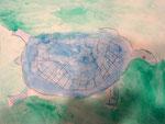 La tortue de Clément, 6 ans (aquarelle + sel + film alimentaire)