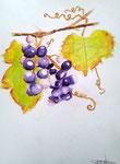 Grappes de raisins de Jeanne, 11 ans (aquarelle)