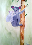 Koala de Lilimay, 10 ans (aquarelle)