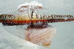 Die Verwandlung der Verwandlung, 2013, Materialdruck, 17 x 25 cm