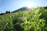 2012/08/09  鳥取県西伯郡伯耆町